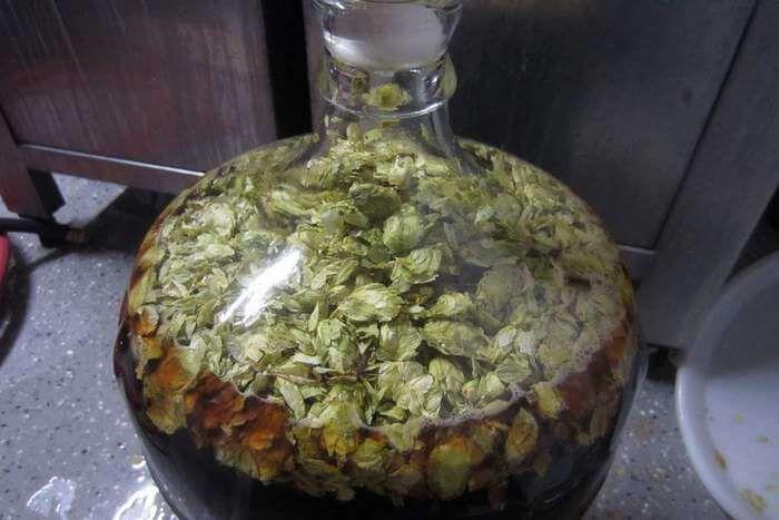 домашнее пиво охмеление