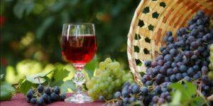Вино из Изабеллы дома — Простой и безопасный рецепт