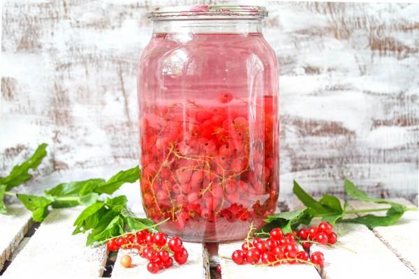 компот из красной смородины закатные банки на зиму