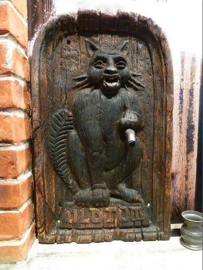 история джина олд том с котом