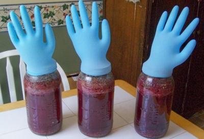 вино из малины гидрозатвор перчатка брожение