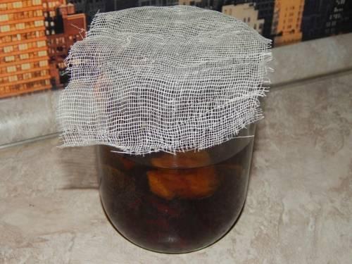 фильтрация домашней сливовой наливки