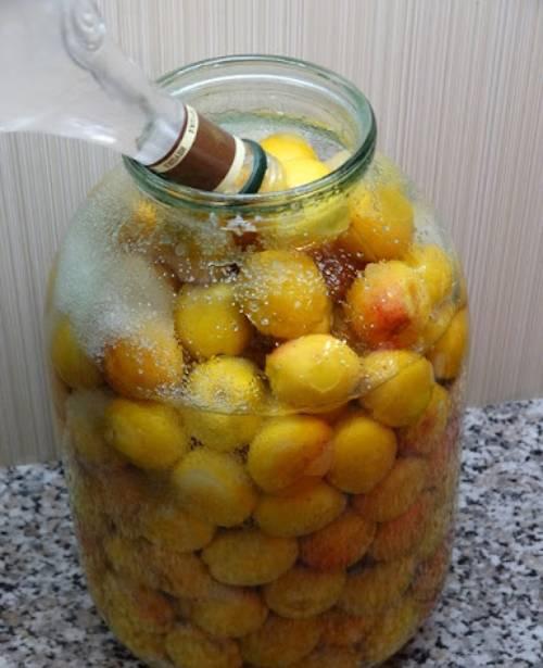 приготовление абрикосовой наливки