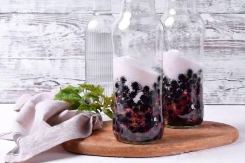 приготовление наливки из черной смородины в домашних условиях