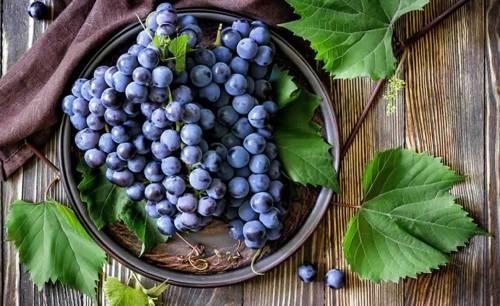 виноград для наливки