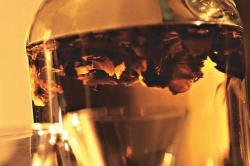 фильтрация настойки на перегородках грецких орехов