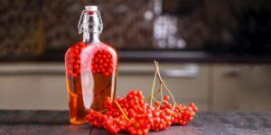 настойка из красной рябины рецепт в домашних условиях