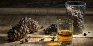 настойка на кедровых орешках кедровка рецепт