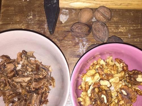 подготовка перегородок грецких орехов для настойки